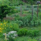 Garden Dreams and Compost Calculations