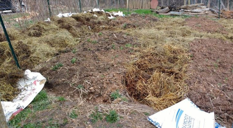 Fill with non composted organic matter