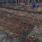 Homestead Potager Garden Bed Design
