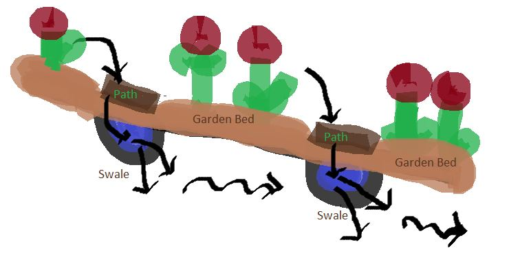 Nutrient Swales for Garden Paths