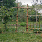 Decorative and Useful Garden Fencing